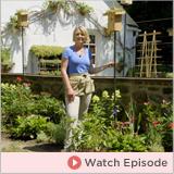 Episode 5: Gardening Tips