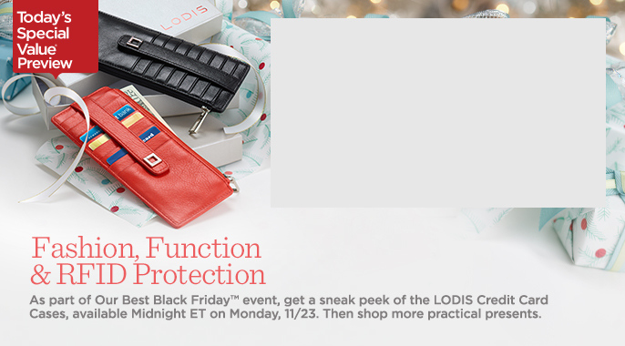 LODIS Set of 2 Credit Card Cases with RFID Protection