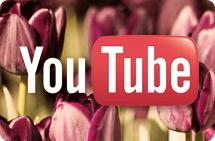 Philadelphia Flower Show videos