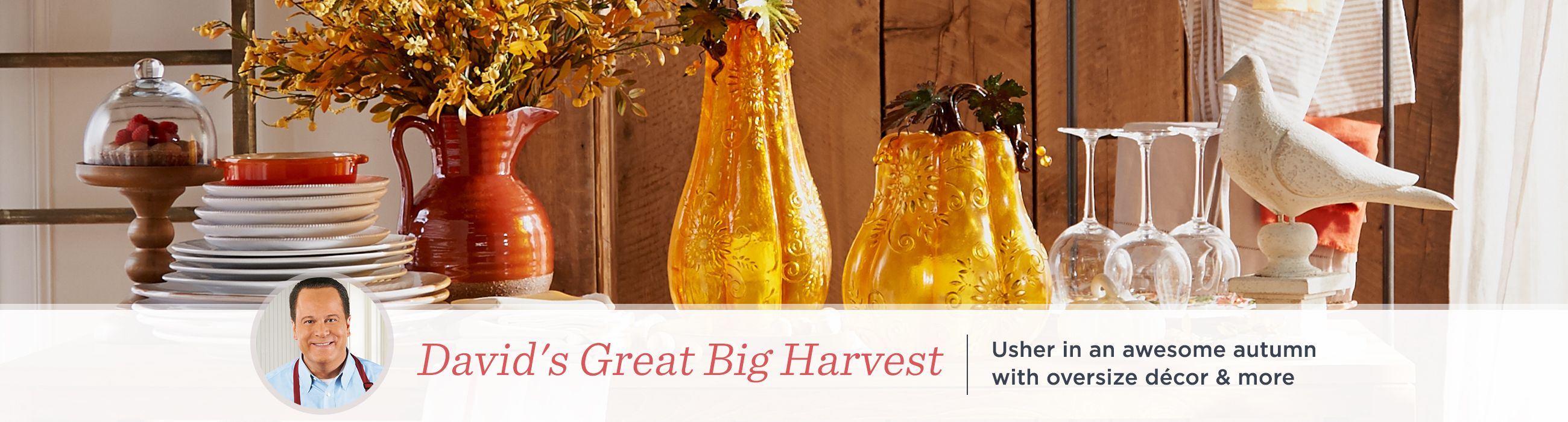 David's Great Big Harvest  Usher in an awesome autumn with oversize décor & more