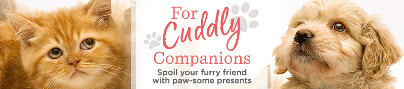 For Cuddly Companions. Spoil your furry friend with paw-some presents