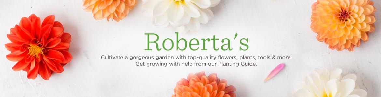 Qvc Roberta S Flowers Shows Tvshoppingqueens
