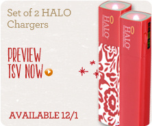 Set of 2 HALO Chargers