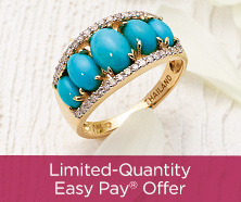 Limited-Quantity Easy Pay(R) Offer