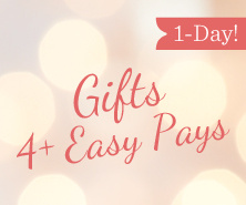 1-Day Gifts Offer