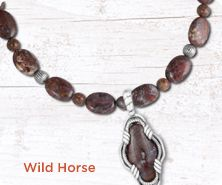 Carolyn Pollack Wild Horse sterling necklace & enhance