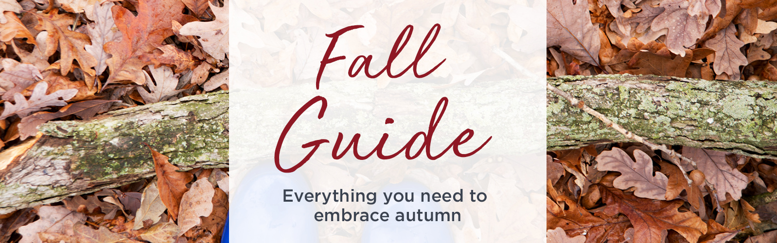 Fall Guide   Everything you need to embrace autumn