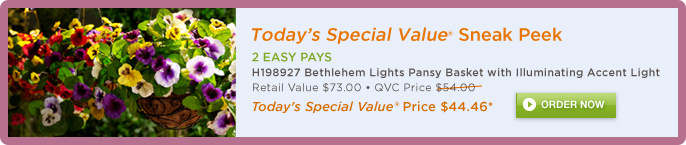 Today's Special Value® Sneak Peek -- H198927 Bethlehem Lights Pansy Basket with Illuminating Accent Light