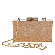 Fornash Perspex Glitter Clutch Bag