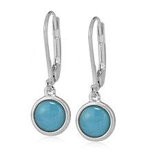 Sleeping Beauty Turquoise Leverback Drop Earrings Sterling Silver