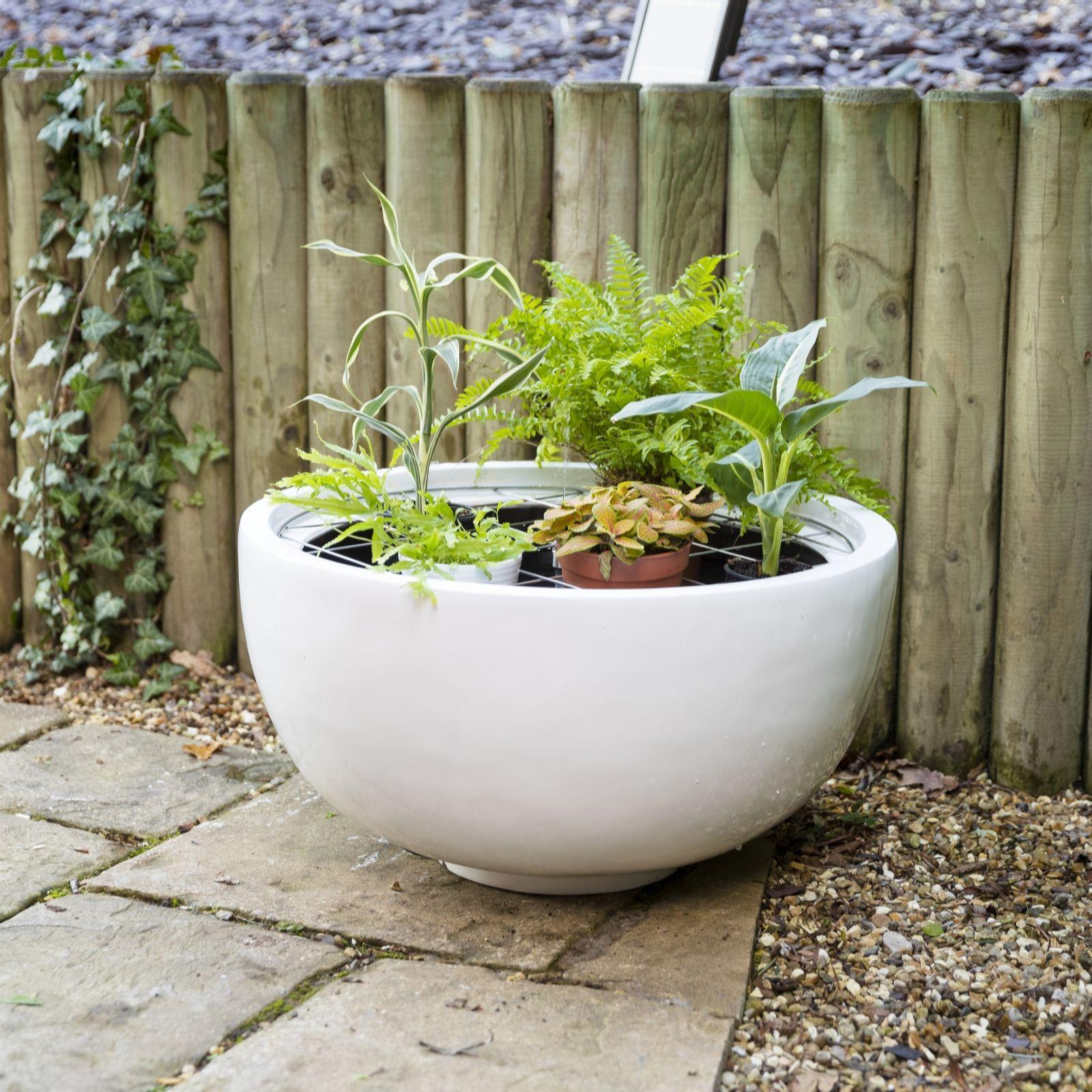 Solar Ed Floating Garden
