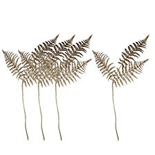 Home Reflections Set of 4 Glittered Fern Stems