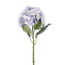 Peony Set of 3 Blue Large Headed Hydrangea Stems