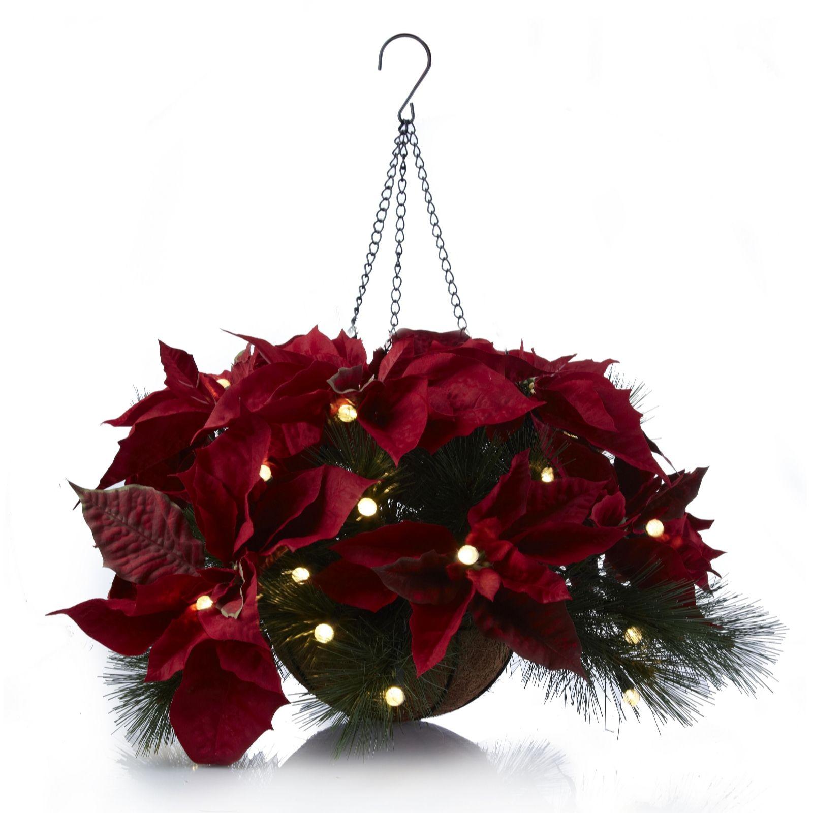 Christmas Hanging Baskets.Bethlehem Lights Pre Lit Hanging Basket With Poinsettia Faux Flowers Qvc Uk