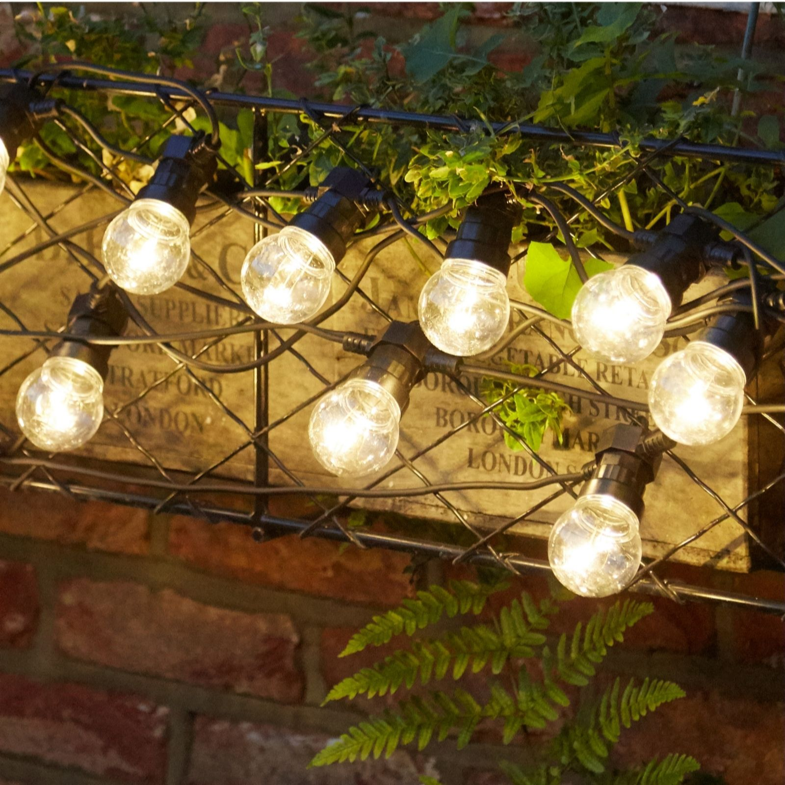 Home Reflections Mains Operated 10m Indoor Outdoor 20 Bulb Led Lamp Party Lights Qvc Uk