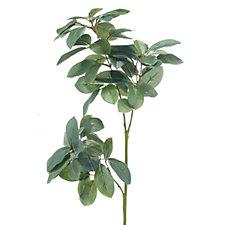 Peony Set of 2 Green Leaf Stems