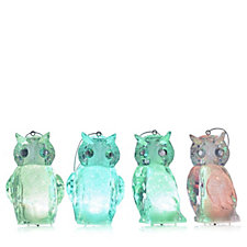 Home Reflections Set of 4 Colour Morphing LED Owl Decorations