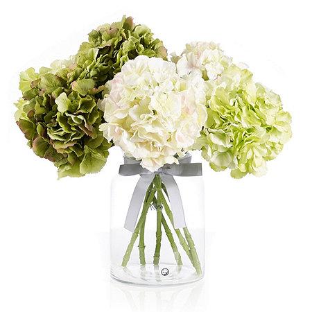 Peony RHS Hydrangeas in Hampton Vase