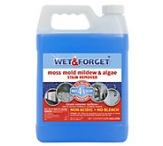 Wet & Forget Mold, Mildew, Moss & Algae Stain Remover Concentrate - V33711