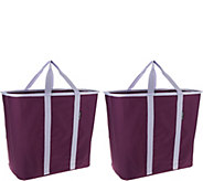 SnapBasket Set of 2 Laundry Totes by CleverMade - V34449