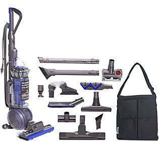 Dyson Ball Animal 2 Total Clean Upright Vacuum w/ Tools & Bag