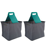 Clevermade Set of 2 SnapBasket Foldable Trunk Caddy - V35088